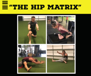 """THE HIP MATRIX"""