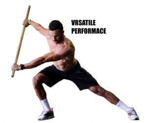 VRSATILE PERFORMANCE PLAN