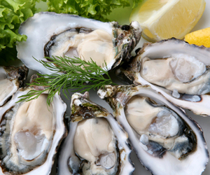 Raw Oyster Concentrate