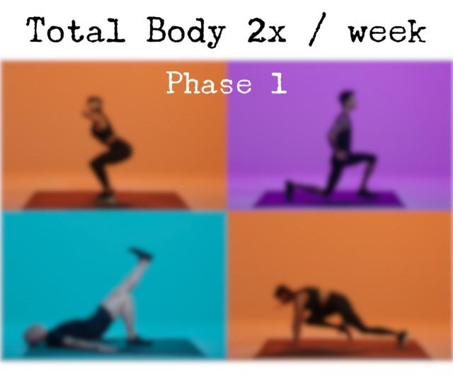 Total Body 3x / Week Phase 1