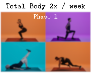 Total Body 2x / Week Phase 1
