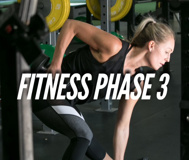 Adult Fitness Program Phase 3 (Power)