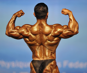 Bodybuilding Workout Plan