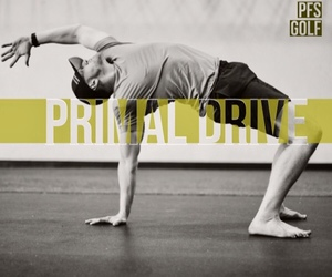 PRIMAL DRIVE