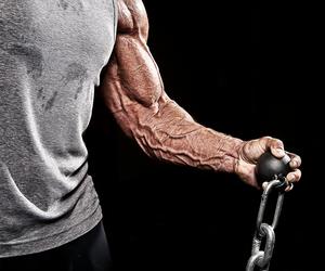 Forearm Workout Plan