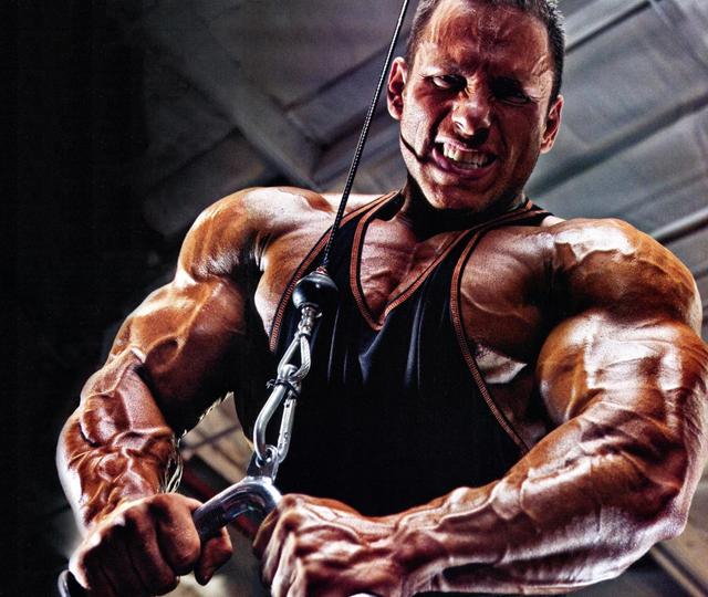 Muscle Mass Workout Plan