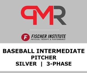 Baseball / Inter / Pitcher / Silver / 3 Phase