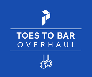 Toes To Bar Overhaul Program